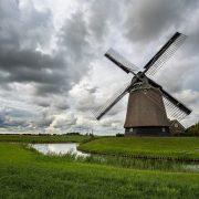 Szintán gyakori skandináv fordítási feladat a holland fordítás.