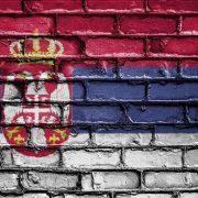 A szerb nyelv.