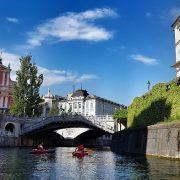 Időnként gyakori az igény a különböző szlovén fordításokra.